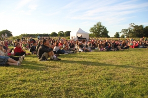 Big-House-Festival-audience-listen-to-LAPD-1024x682